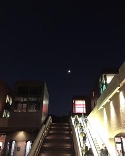 それぞれの夜景